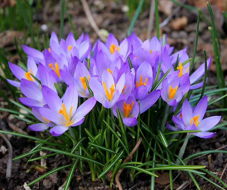 Tájékoztatás tavaszi szünetről